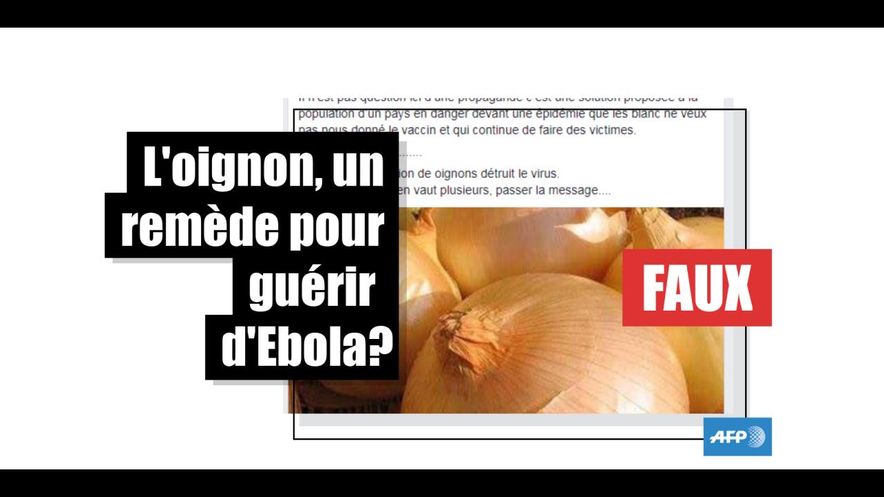 Consommer de l'oignon pour combattre le virus Ebola ? Les experts