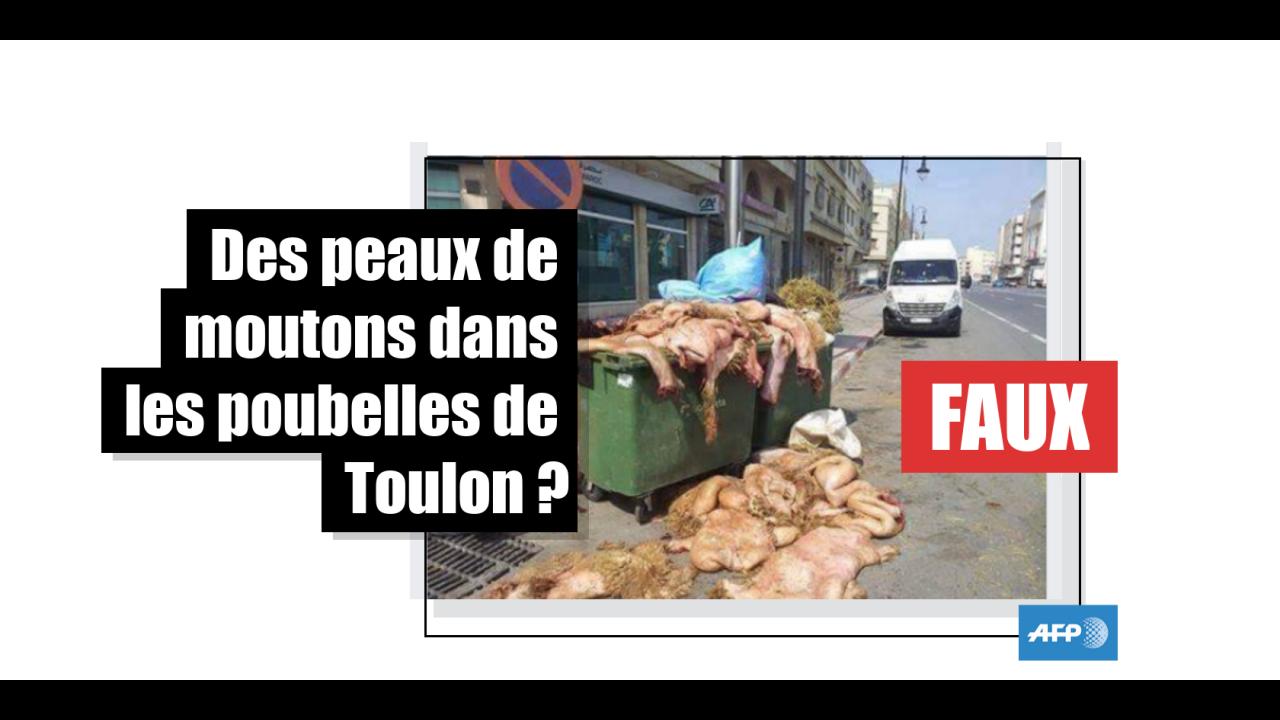 Des poubelles qui débordent de peaux de moutons en France ? Non,